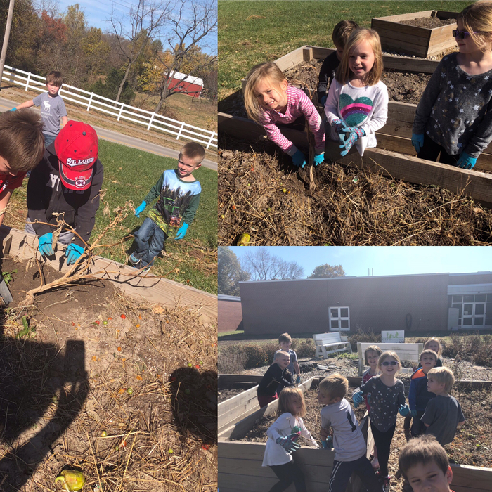 Kindergarten is cleaning up the garden! 🌿