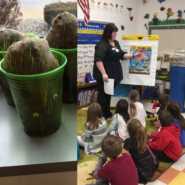 Rachel Hazen, from U of I extension, visited the Kindergarten classes at Alhambra Primary.🌿🍃🌿