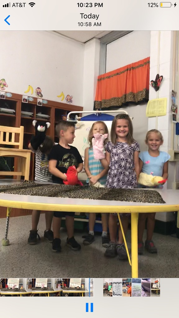 Sight Word Puppet Show