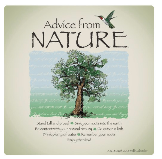 Advice from Nature